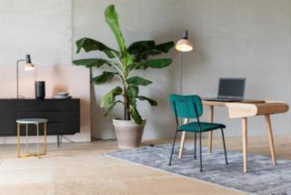 Inspiration-style-green-bureaux-professionnels-3